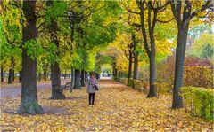 Autumn in Vienna