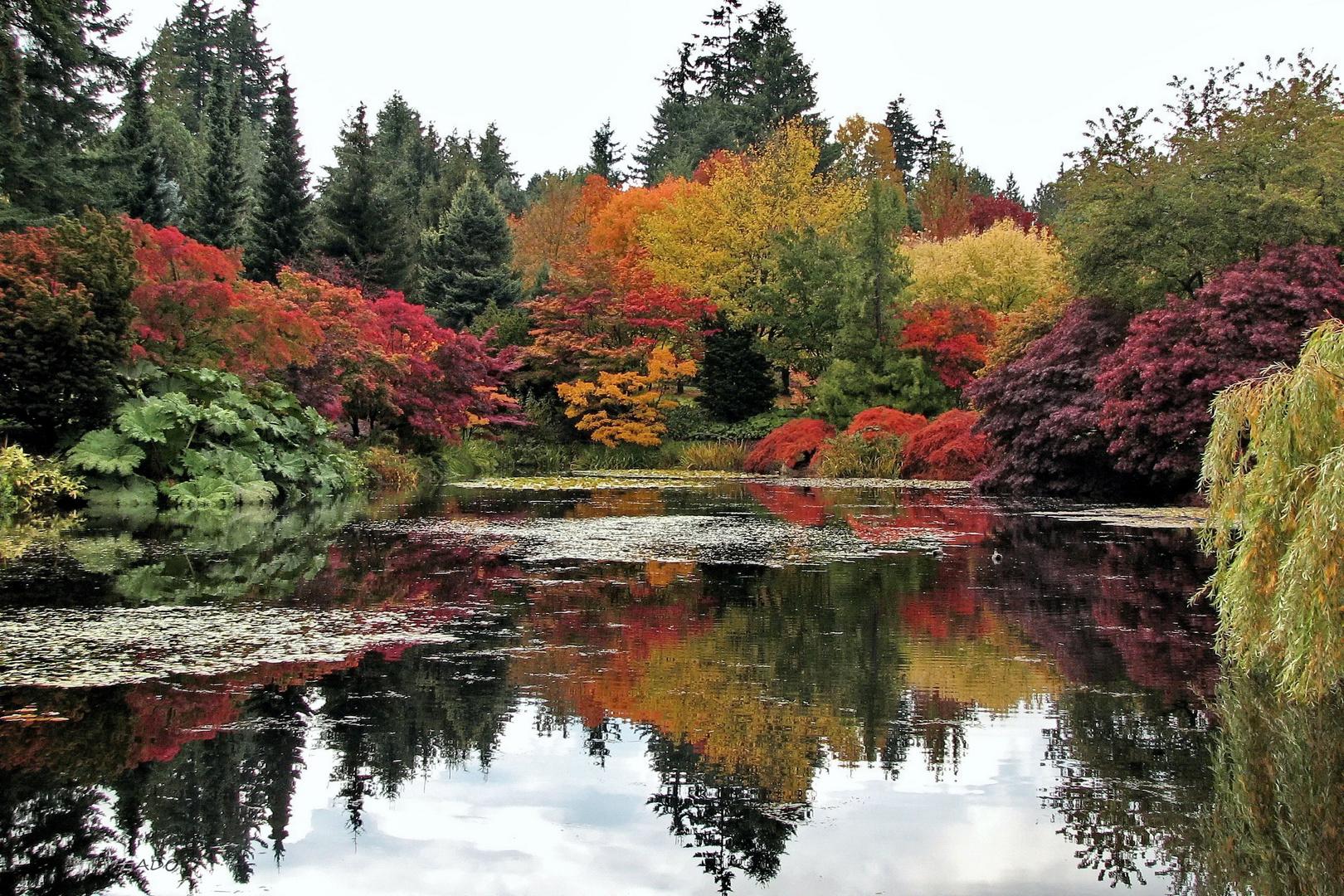 Autumn Interlude  (2)