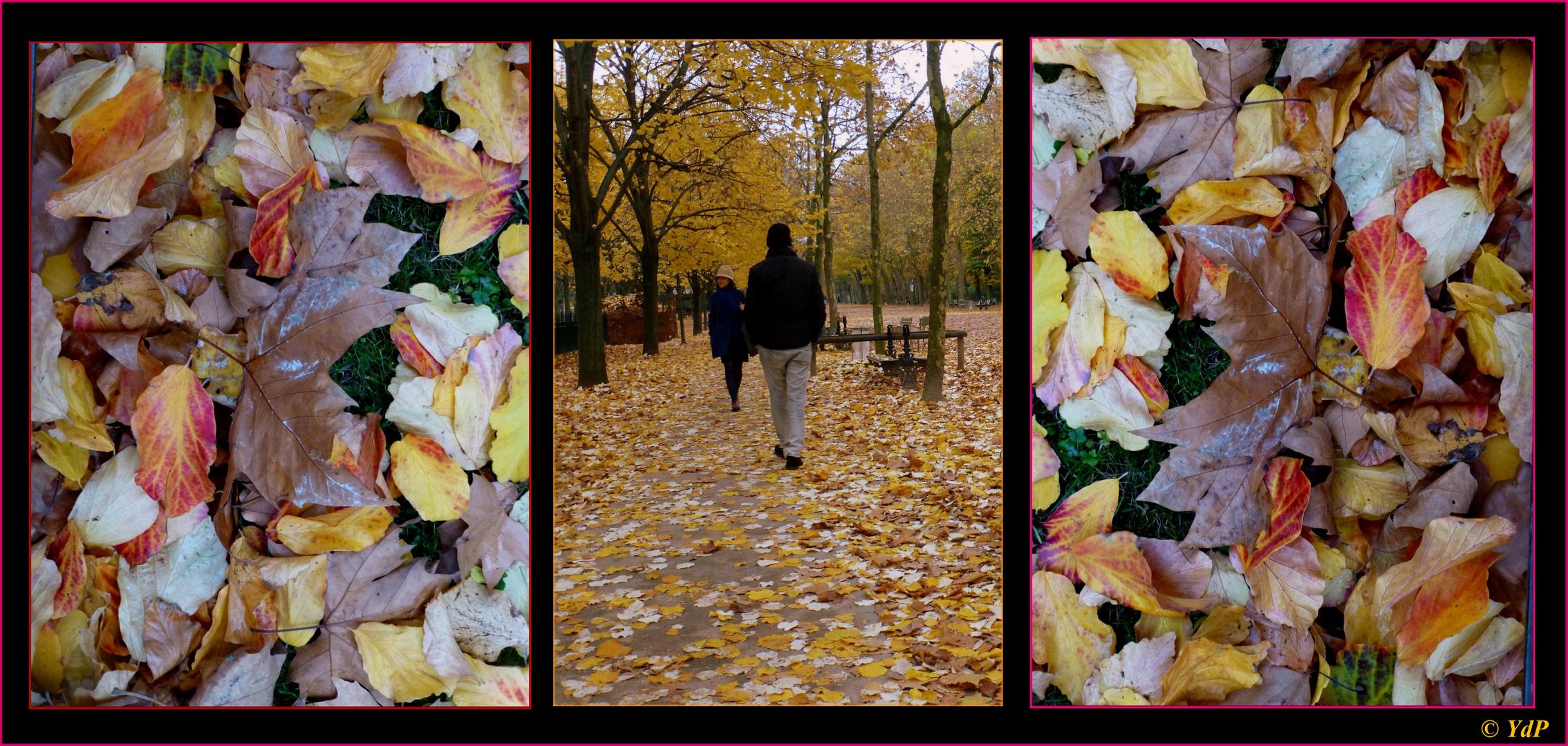 """""""Autumn leaves"""" & le flâneur du Luxembourg..."""