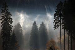 Herbst im Harz