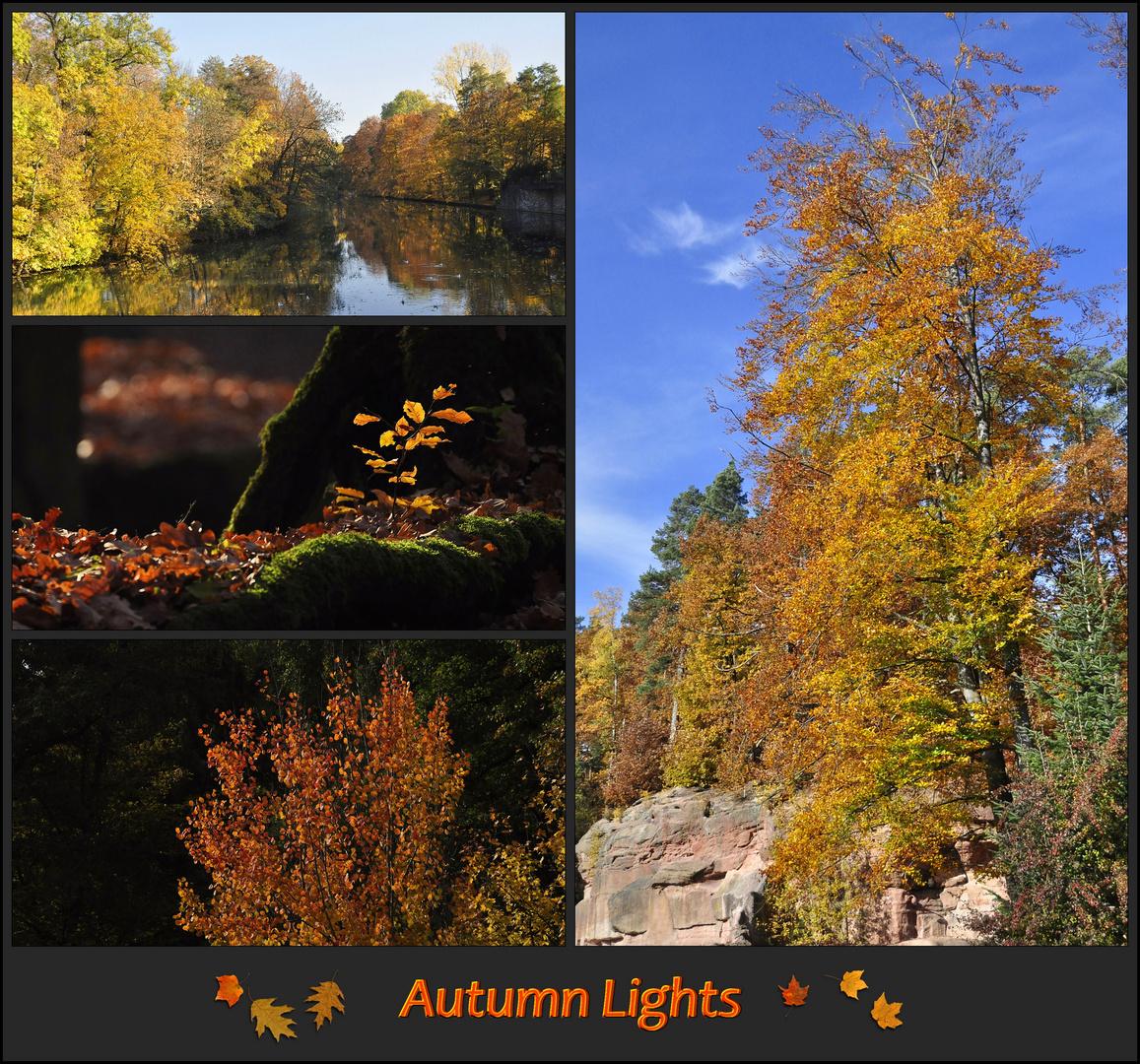 Autumn Lights - Die Collage 2