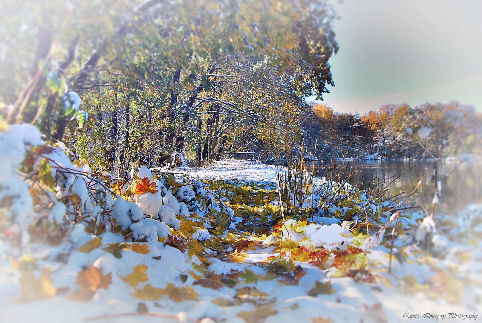 Autumn meets winter 2012