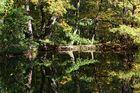 Autumn Mirrors