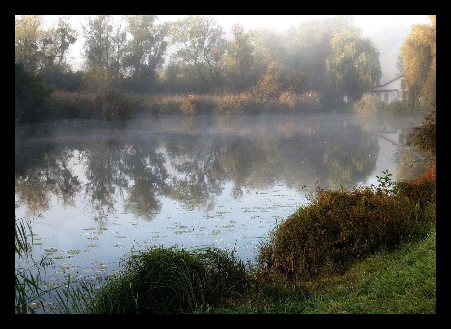 autumn morning (2)