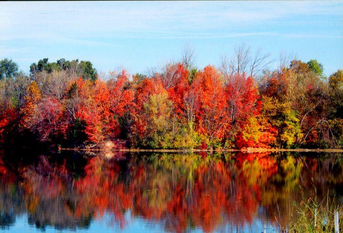 Autumn morning in Michigan