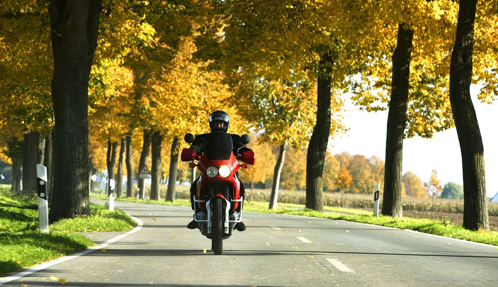 autumn ride von Alex.08