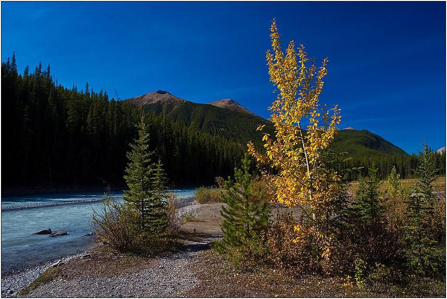 Autumn Rocky Mountain Colours