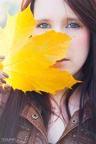 Autumn Sapphires