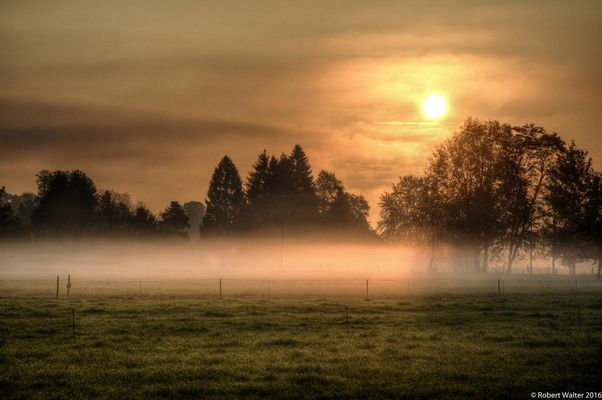 Autumn Sunrise (3)