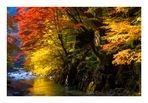 Autumn waterside-2