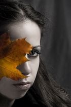 autumn whispers........