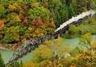 Autumn world.....
