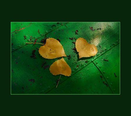 Autumnal composition V
