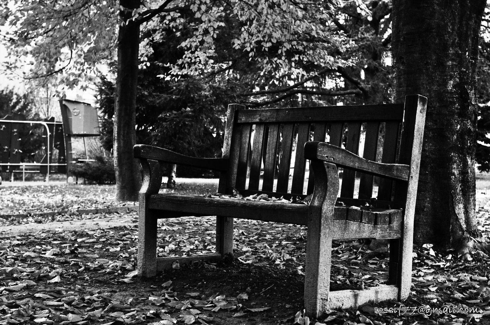 Autunno in bianco e nero foto immagini le stagioni dell for Foto hd bianco e nero