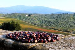 Autunno in Toscana