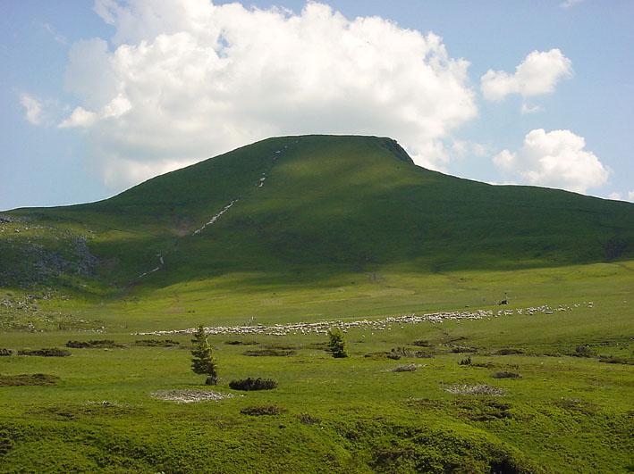 Auvergne (Hügel)