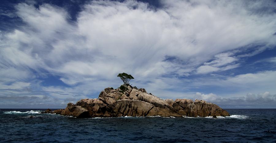 Ave Maria Island