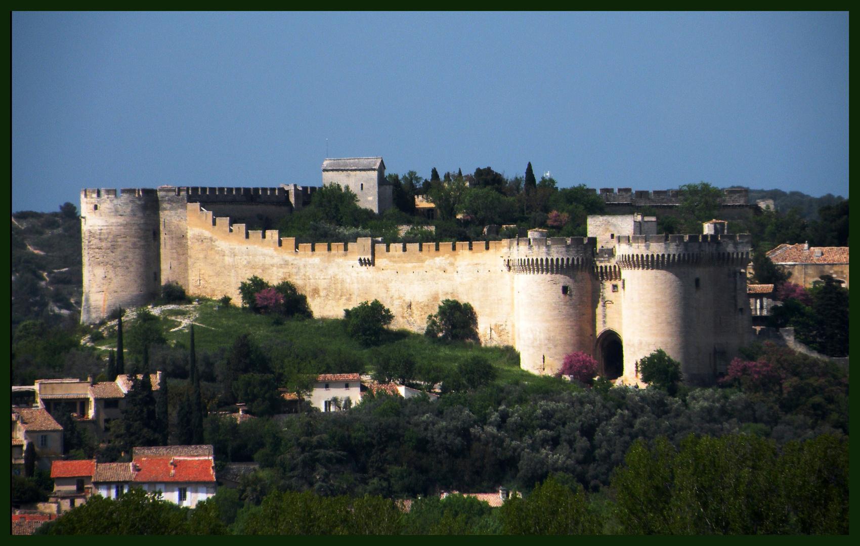 Avignon et son château.