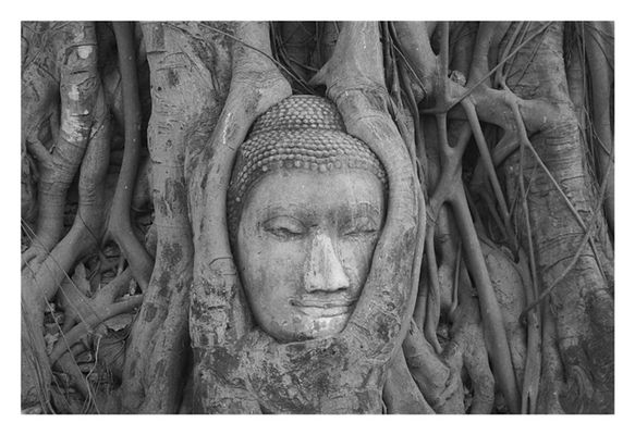 *Ayutthaya*