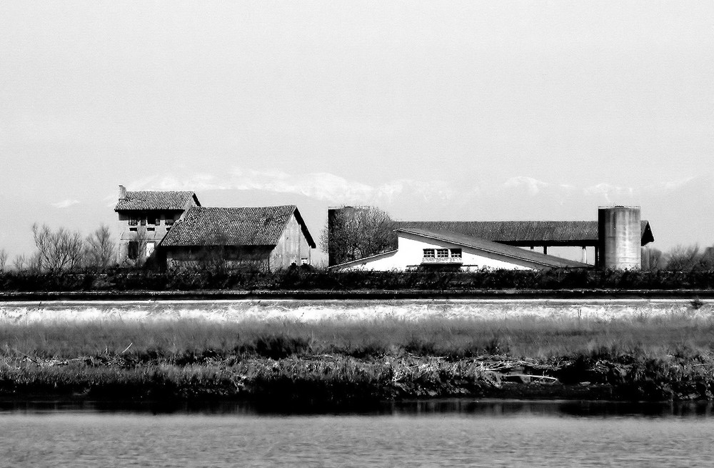 Azienda agricola in laguna di Venezia