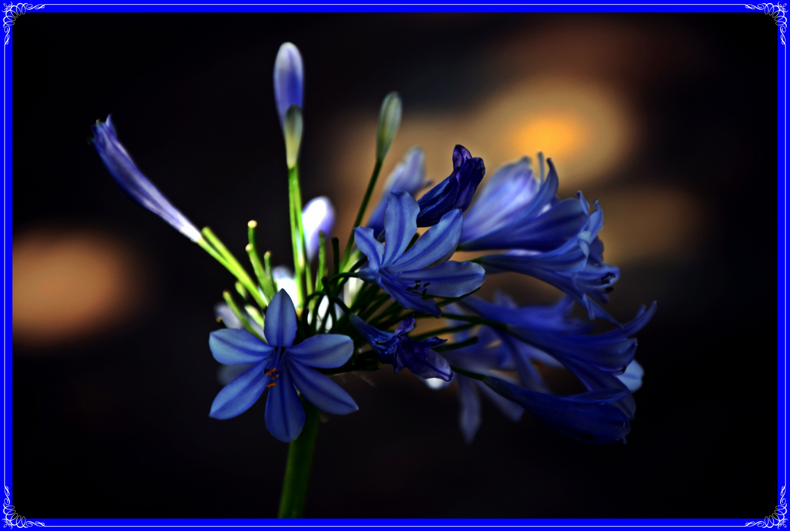 Azul como el cielo