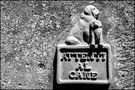 Attenti al cane (Beware of the dog) de Carlo.Pollaci