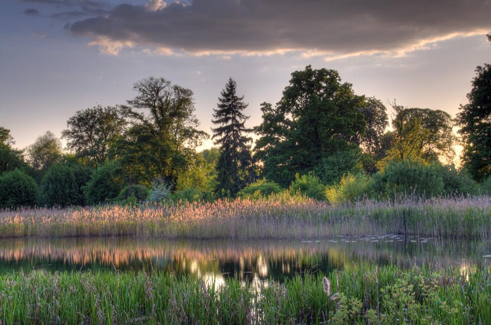 Babelsberger Garten 3
