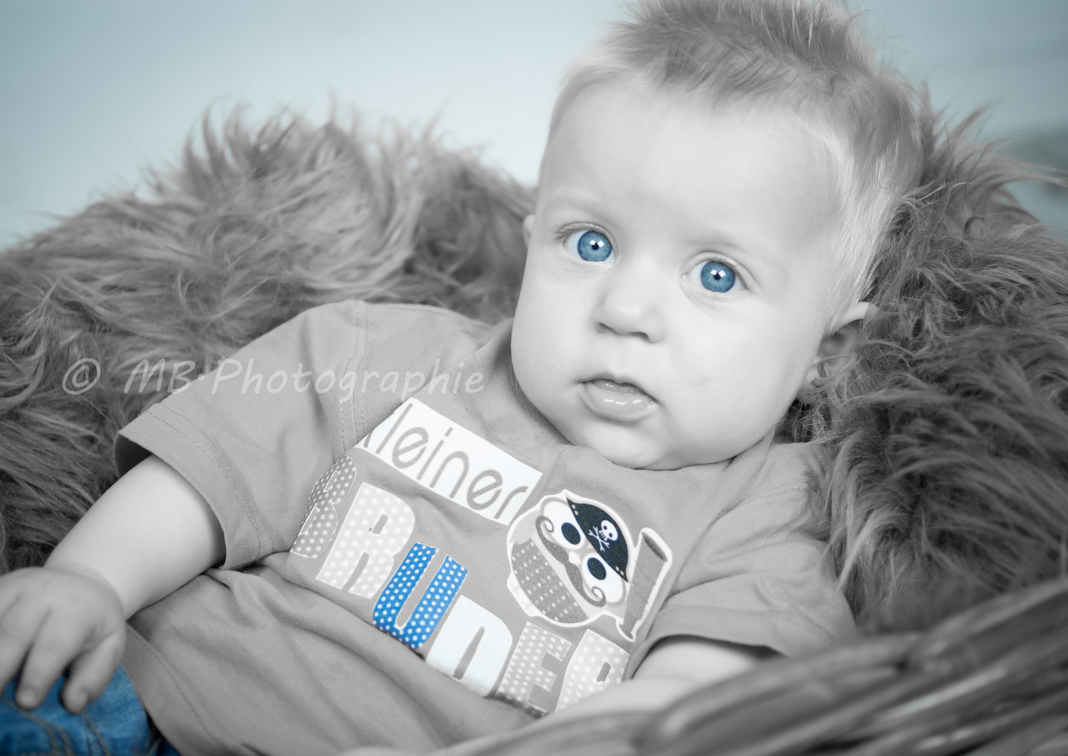 ,,Baby Blue''