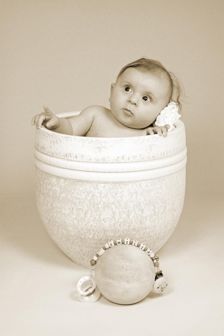 Baby in der Vase...
