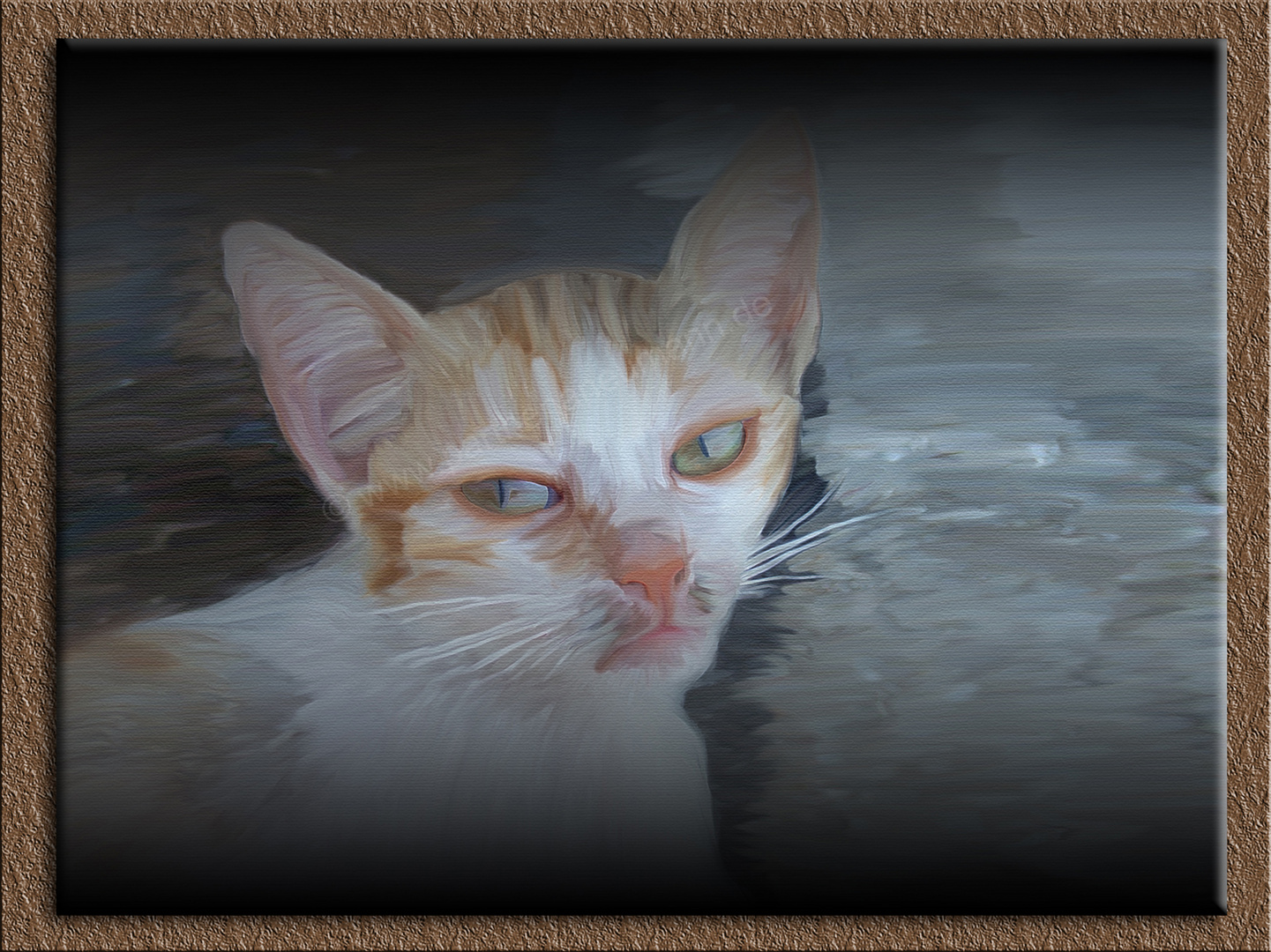 """ Baby Katze """