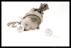 Babyfotografie - Christine von Wiegen - Lichtgemälde 08