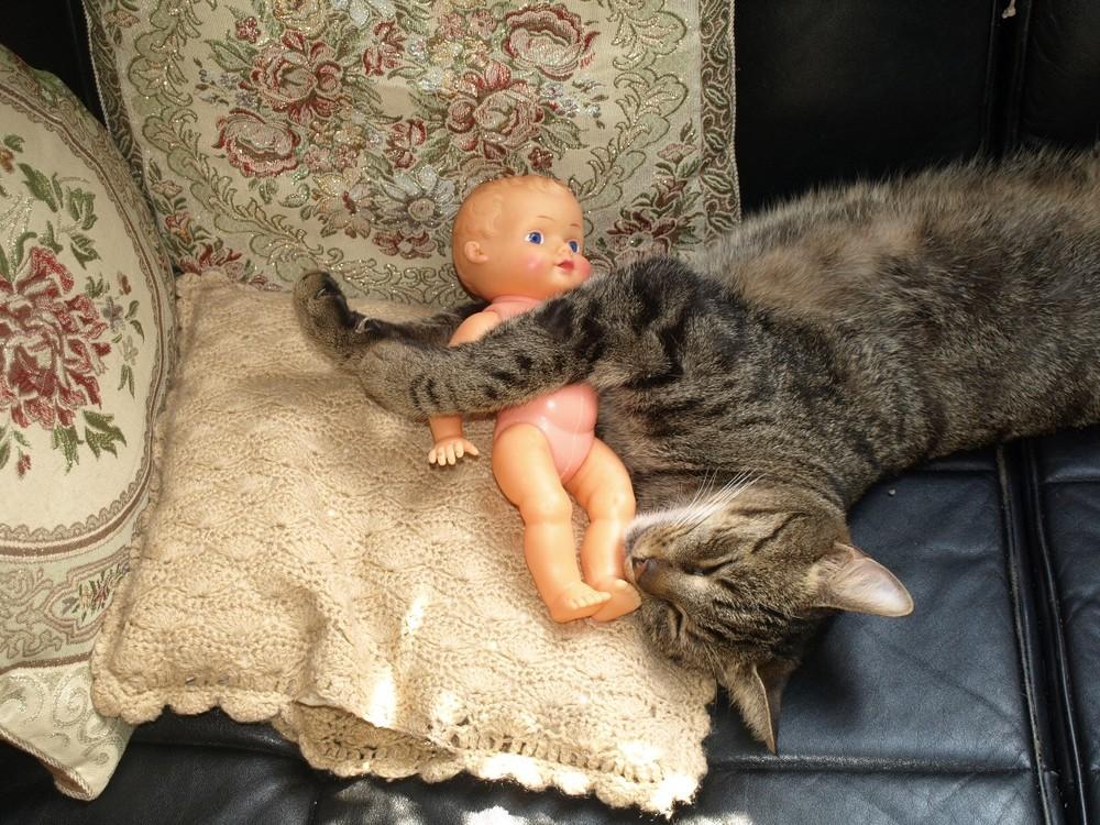 Babysitter sein