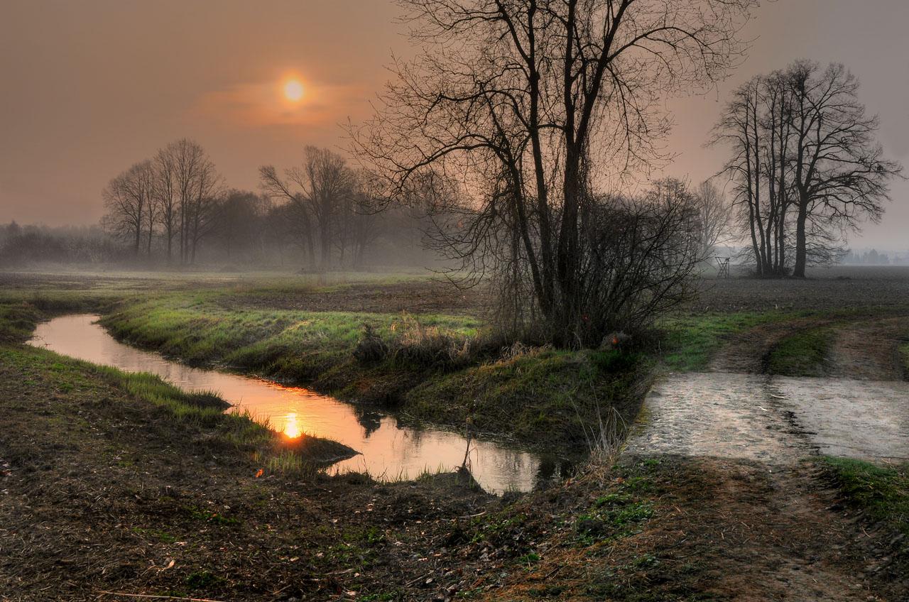 Bach, Brücke, Morgen