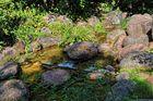 Bachlandschaft........, aus dem Britzer Garten