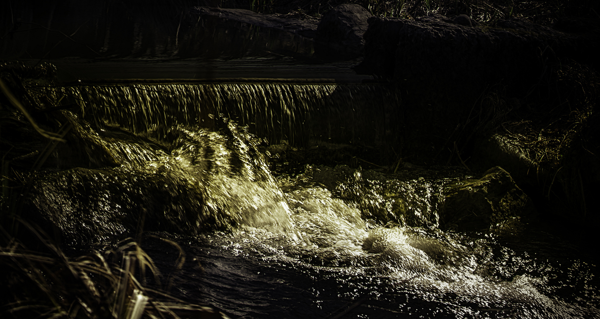 .:Bachlauf im Englischen Garten:.
