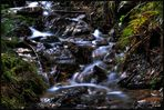 Bachlauf im Erzgebirge