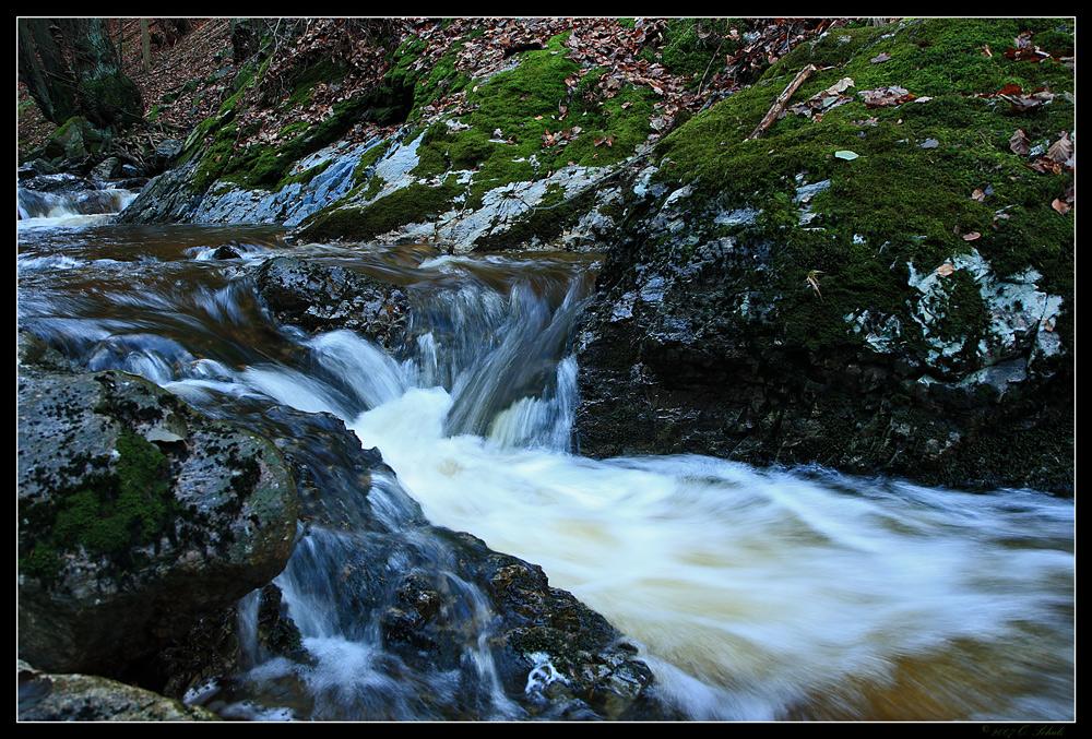 Bachlauf im Harz