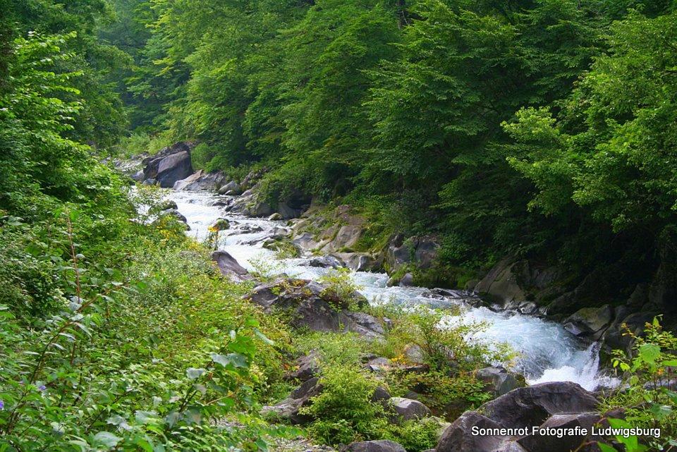 Bachlauf in Nikko, Japan