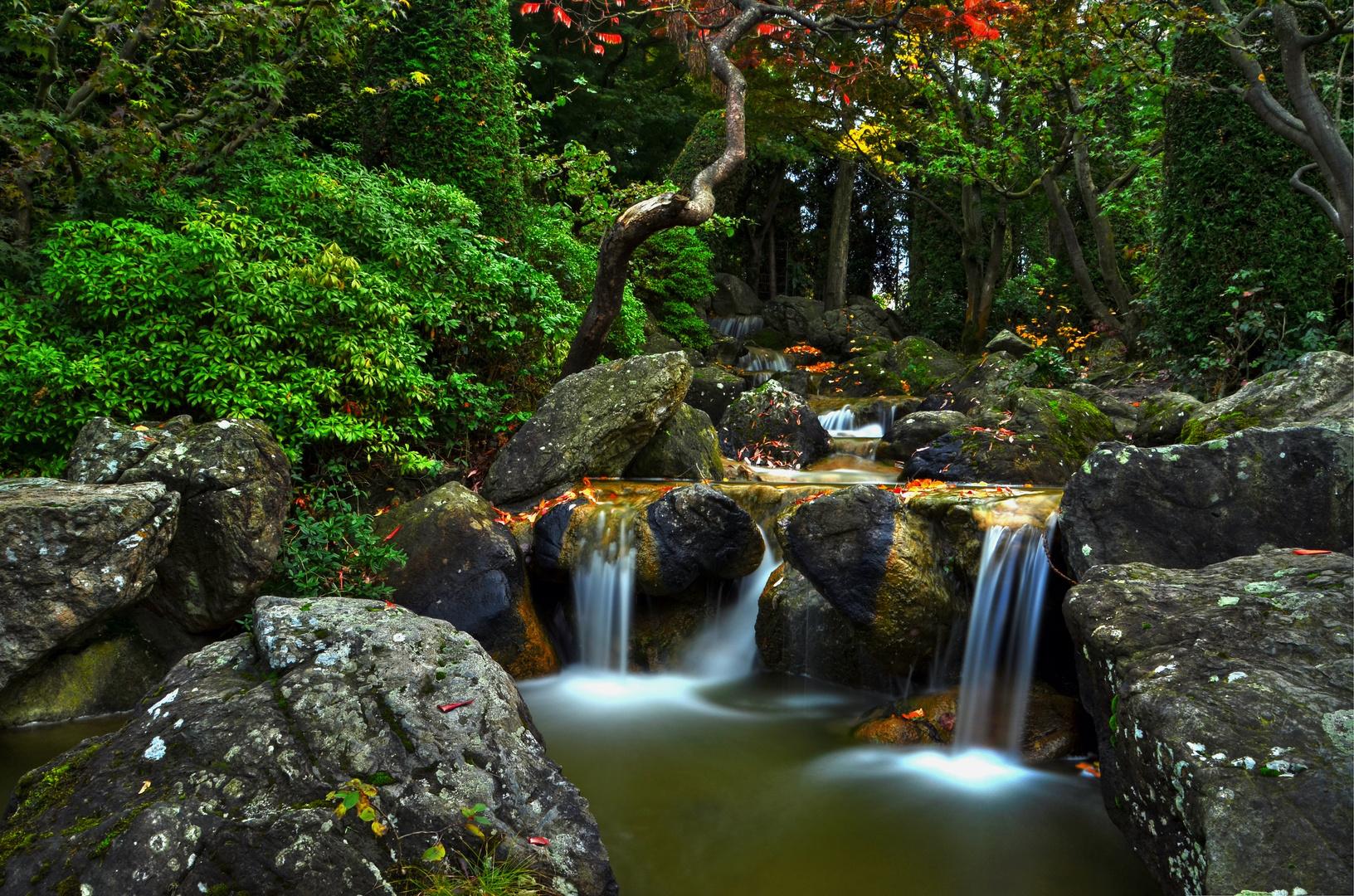 Bachlauf japanischer Garten/Bonn
