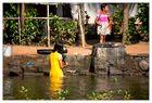 Backwaters #5