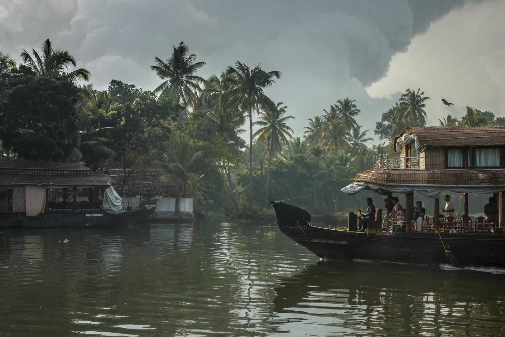 Backwaters au petit matin
