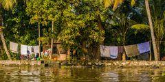 Backwaters - Wasserland als Lebensraum (1)