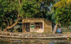Backwaters - Wasserland als Lebensraum (2)