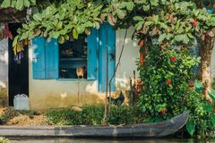 Backwaters - Wasserland als Lebensraum (3)