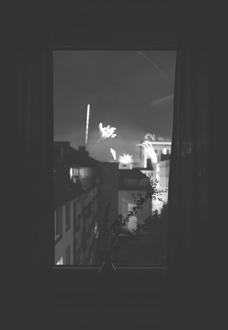 backyard 00:01 / 01.01.2014