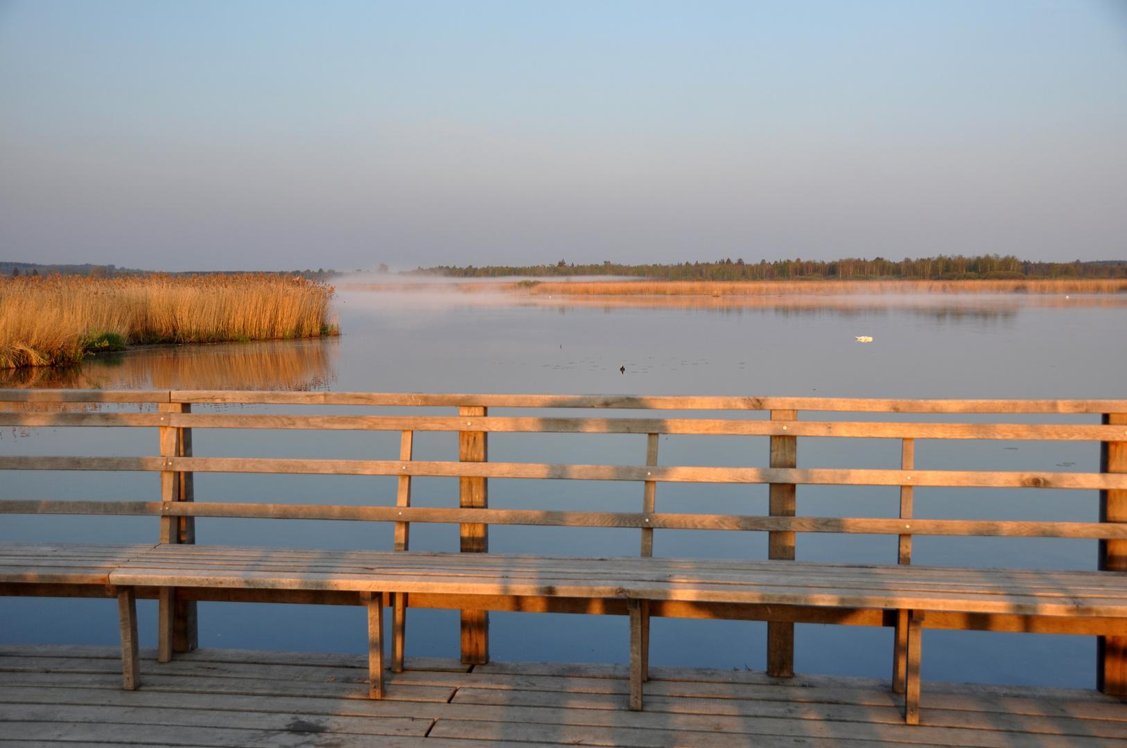 Bad Buchau Noch ist Ruhe am See.....