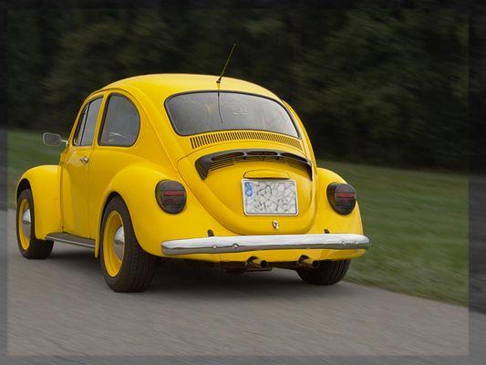 Bad Bug 2