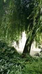 Bad Godesberger Stadtpark