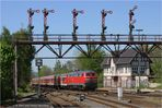 Bad Harzburger Signalflügel