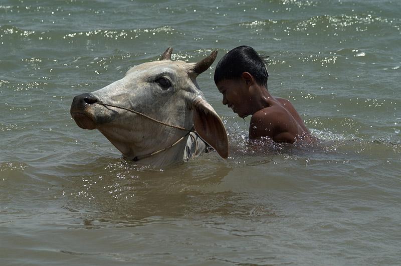 Bad im Mekong (2)